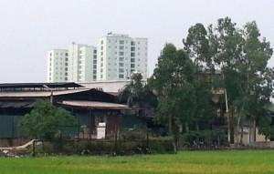 xuong-tai-che